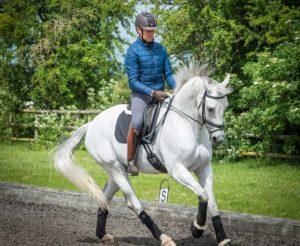 Levi Hunt Equestrian